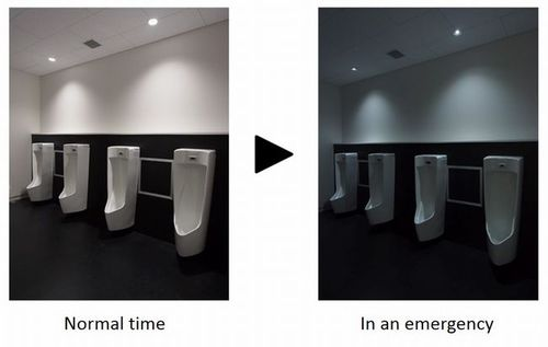 Photo: Toilet Lighting System in Blackouts